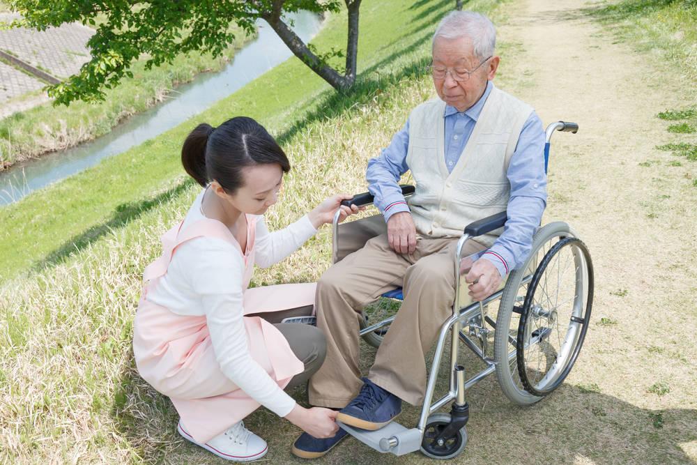 Asssess all fall risks to prevent falls in the elderly