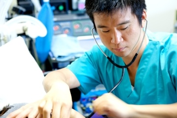 Male nurses are often not seen as caring as their female counterparts.