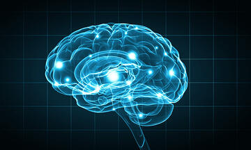 Concept of human intelligence with human brain on blue background-1